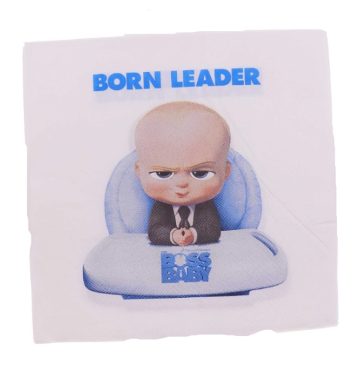 Born leader kids birthday theme party supplies set party decorations (FOR 10 PERSON) 2